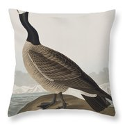 Hutchins's Barnacle Goose Throw Pillow