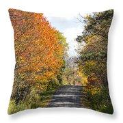 Huyck Preserve Fall Throw Pillow