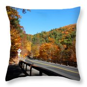 Hwy 23a 4 Throw Pillow