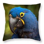 Hyacinth 363 Crop Throw Pillow