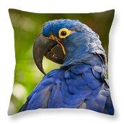 Hyacinth 458 Throw Pillow