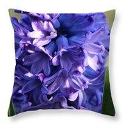 Hyacinth Highlights Throw Pillow