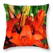 Hybrid Lilies Throw Pillow