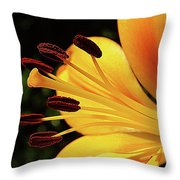 Hybrid Lily Throw Pillow
