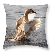 Hybrid Showoff Throw Pillow