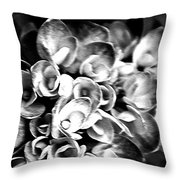 Hydrangas Bw Throw Pillow