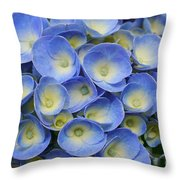 Hydrangea Closeup Throw Pillow
