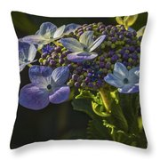 Hydrangea Color Throw Pillow