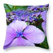 Hydrangea Flowers Art Prints Hydrangea Garden Giclee Art Prints Baslee Troutman Throw Pillow