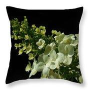 Hydrangea Formal Study Landscape Throw Pillow