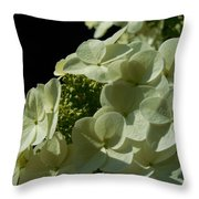 Hydrangea Formal Study Portrait Throw Pillow