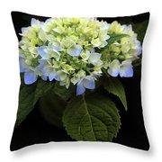 Hydrangea In Bloom Throw Pillow
