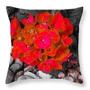 Hydrangea In Carmine Throw Pillow