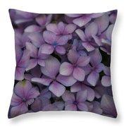 Hydrangea In Lavender 1 Throw Pillow