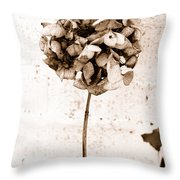 Hydrangea Interest Throw Pillow