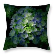 Hydrangea - Flowers Throw Pillow