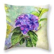 Hydrangea On Clayboard Throw Pillow