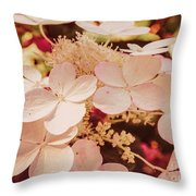 Hydrangeas 7 Throw Pillow