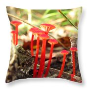 Hygrophorus Cantharellus Throw Pillow