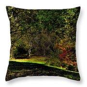 Hylebos In Autumn Throw Pillow