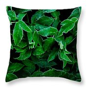 Hypersleep Throw Pillow