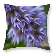 Hyssop Blue Throw Pillow