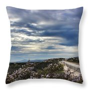 I-8 Highway Throw Pillow