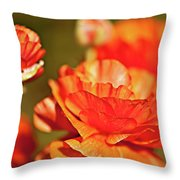 I Am Dazzling Throw Pillow