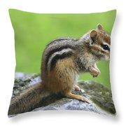 I Am Just So Cute Throw Pillow