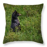 I Am So Handsome Throw Pillow