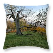 I Am Such A Tree. Throw Pillow