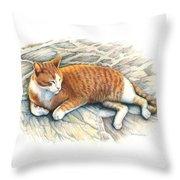 I Am Tiger Throw Pillow