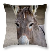 I Assked You A Question Throw Pillow