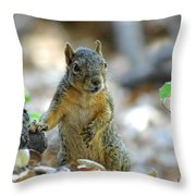 I Ate Too Many Nuts Throw Pillow
