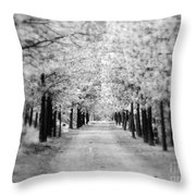 I Can Only See So Far Throw Pillow
