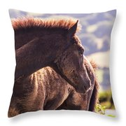 I Can See You Throw Pillow