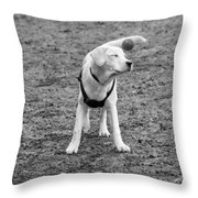 I Don't Know How To Fetch Yet Throw Pillow