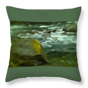 I Dreamed Of The River Throw Pillow