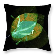 I Have Many Faces Number Three Throw Pillow