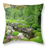 I Have Wandered Throw Pillow
