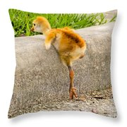 I Know I Can. I Know I Can		 Throw Pillow