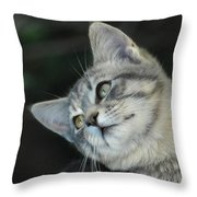I Know I'm Cute Throw Pillow