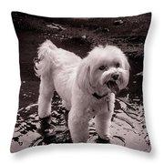 I Like The Mud Throw Pillow