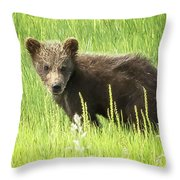 I Love Me A Teddy Bear Throw Pillow by Belinda Greb