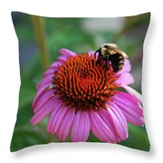 I Love Pollen And Pollen Loves Me Throw Pillow