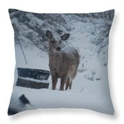 I Love Snow Throw Pillow