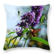 I Love The Purple Ones Throw Pillow