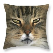 I Miss Him Sometimes ... Throw Pillow