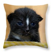 I Miss You Kitty Throw Pillow