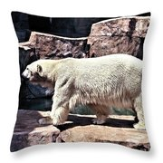 I Really Need To Cool Off Throw Pillow